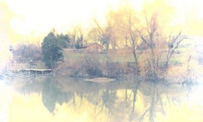 Village Black Creek