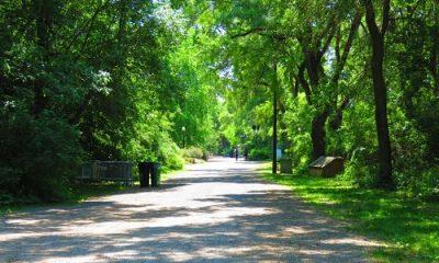 Protection des parcs