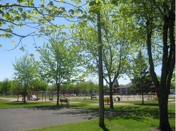 Parc de la Marelle