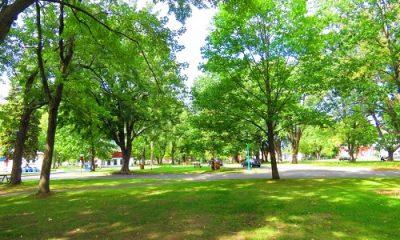 Parc Pie XII