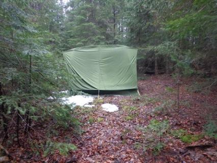 tente en forêt