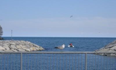 Lac de la Côte-Nord