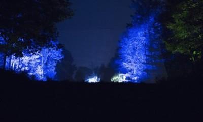 la forêt bleue