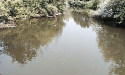 milieux humides