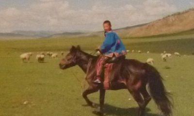 Mongols et steppe
