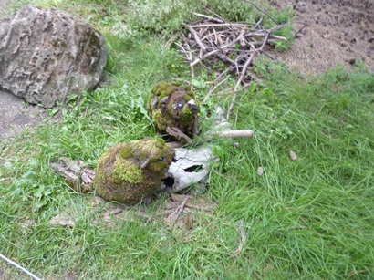 L'œuvre présentée utilise les mousses et les lichens, illustrant chaque aspect de la biodiversité de l'Abitibi, région nordique. Photo : © Univers.GrandQuebec.com