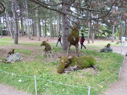es mousses peuvent supporter de longues sécheresses et renaître à la faveur d'une petite pluie. Photo : © Univers.GrandQuebec.com