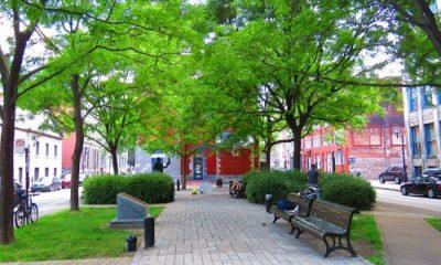 Place D'Youville au coeur du Vieux-Montréal. Photo de Megan Jorgensen.