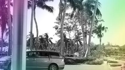 Un bon leader de son pays, c'est comme le conducteur d'une voiture : il tourne le volant doucement, quand il le faut, en anticipant les effects, parce que s'il tourne le volant trop violemment, la voiture finit dans le fossé (Megan Jorgensen). Photo : Megan Jorgensen.