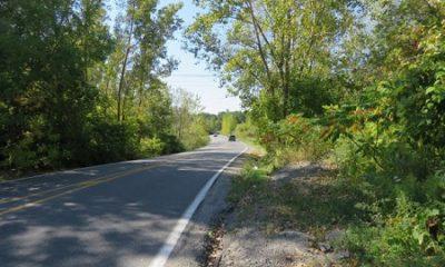 Avenue Souvenir à Laval. Photographie de GrandQuebec.com.