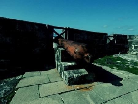 « Les marchands de canons ont inventé la guerre, comme les marchands de bidets ont inventé l'amour. » Jean-Didier Wolfromm, romancier français. Photographie par Megan Jorgensen.