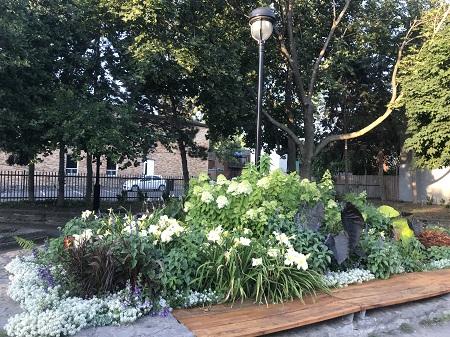Parc P.A. #38. Arrondissement Ville-Marie. Photographie par Megan Jorgensen.