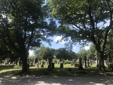 Un îlot du cimetière. Photographie par Megan Jorgensen.