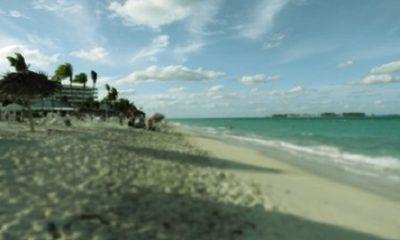L'île dans sa petitesse est tellement variée dans ses terrains et ses aspects qu'elle offre toutes sortes de sites et souffre toutes sortes de cultures. (Les Rêveries du promeneur solitaire. Jean-Jacques Rousseau). Photographie par Megan Jorgensen.