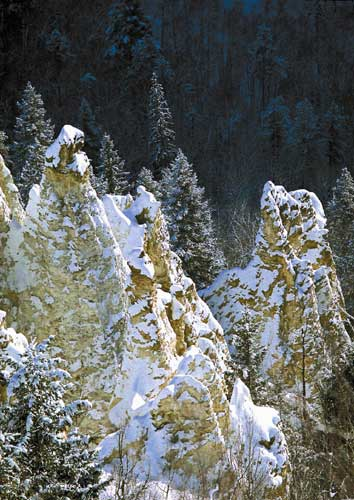 Photographie : parc provincial Pinnacles, copyright © City of Quesnel