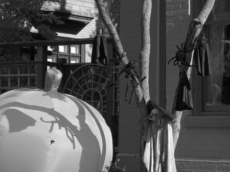 Pour la première fois il voyait cette chambre confortable : une pièce claire au plafond haut bordé d'une grosse moulure, des murs recouverts d'un papier peint vert tendre, une armoire de chêne massif, des meubles rustiques mais cossus. (Louis C.Thomas La manie de la persécution Éditions J'ai Lu.) Photographie de Megan Jorgensen.