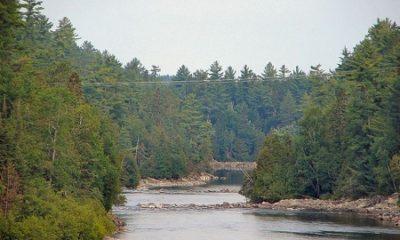 Rivière Kipawa à l'aval du barrage de Laniel. Auteur de la photographie : P199, image libre de droits.
