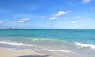 J'ai rêvé l'archipel parfumé, montagneux,/ Perdu dans une mer inconnue et profonde/ Un temple ambré, le ciel bleu, des cariatides. / Des bois mystérieux ; un peu plus loin, la mer… / Une cariatide eut un regard amer / Et dit : C'est ennuyeux de vivre en ces temps vides.Charles Cros Collier de griffes. Photographie par Megan Jorgensen.