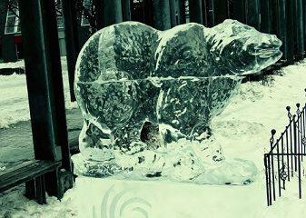 Un piéton audacieux à Montréal. Photographie de Megan Jorgensen.