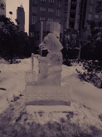Sassafraz. IceFest de Toronto. Photographie de Megan Jorgensen.