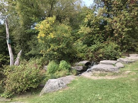 Nous la nômasmes la rivière aux Saulmons, à cause que nos y en prismes (Samuel de Champlain, Les Voyages de 1613). Photographie de Megan Jorgensen.