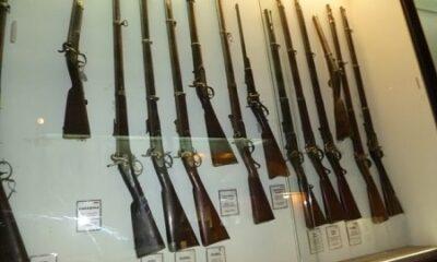 Carabines et fusils.Photographie de Megan Jorgensen.