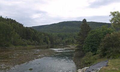 Vue sur la rivière de la Grande-Vallée deupis le pont couvert. Source de l'image :https://commons.wikimedia.org/wiki/File:Grande-Vall%C3%A9e_River.jpg. Auteur de la photographie Ymblanter.