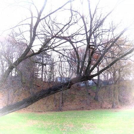 Parc national des Grands-Jardins. Photographie de GrandQuebec.com.