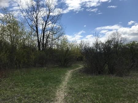 Sentier pédestre qui parcourt le bois Armand-Frappier. Photo de GrandQuebec.com.