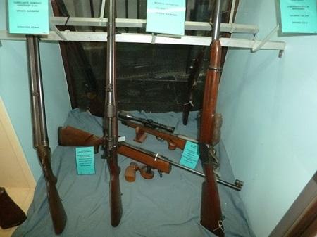Armes sportives et de chasse du début du XXe siècle, dont une avec viseur télescopique.