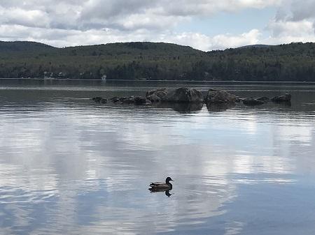 Photo : La ville de Lac-Saint-Joseph, blottie dans les Laurentides au nord-ouest de Québec, bénéficie d'une nature généreuse et colorée, où le lac et la montagne combinent leurs attraits pour favoriser la villégiature.