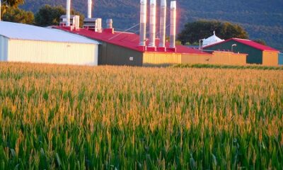 Vue d'une ferme à Saint-Damase. Source de l'image : Site web de la municipalité.