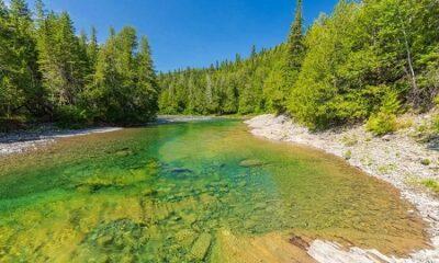 Rivière Saint-Jean. Source de l'image : Saumongaspe.com.