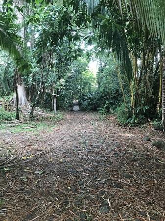 Costa Rica, décembre. Le royaume de la nature. Photo de Megan Jorgensen.