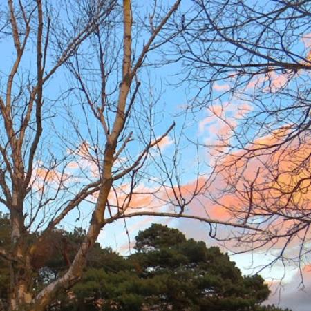 Le soleil de l'Outaouais. Photo de Megan Jorgensen.