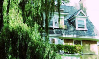 Une maison verte, typique de Rosedale. Photo de Megan Jorgensen.