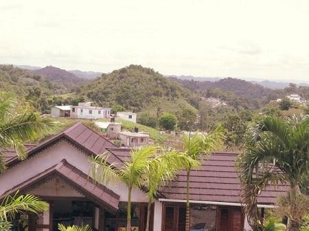 Vue depuis le musée de Bob Marley au Jamaïque. Photo de Megan Jorgensen.