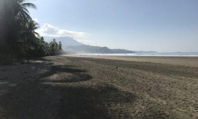 """""""Si vous voulez trouver les secrets de l'univers, pensez en termes d'énergie, de fréquence, d'information et de vibration."""" (Nikola Tesla. Ingénieur, Inventeur, Physicien, Scientifique (1856 - 1943). Photo de la plage du village d'Uvita-de-Osa, au Costa Rica, par Megan Jorgensen."""