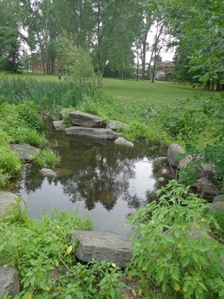 Un étang au parc des Prairies. Photographie libre de droits.
