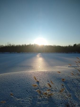 Soleil de Noël. Photo d'Anatoly Vorobyev.