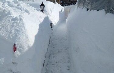 Quelques arpents de neige... Photo d'Anatoly Vorobyev.