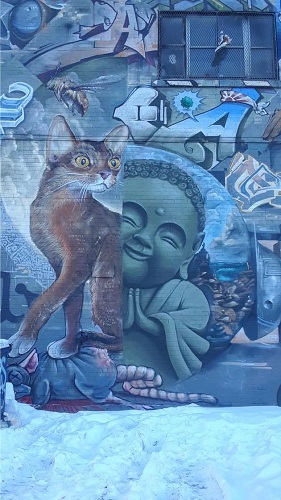 Chat et Bouddha à Montréal. Photo de GrandQuebec.com.