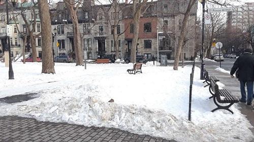 Place Saint-Louis de Montréal en hiver. Photo de GrandQuebec.com.