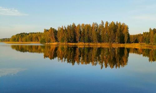 La forêt québécoise. Photo de Natalin_s.