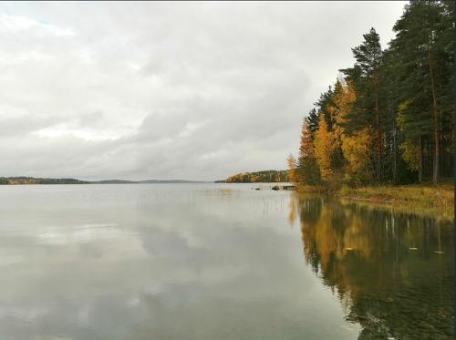 Lac et forêt. Image de Natalin_s.