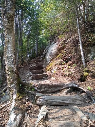 Un sentier dans la montagne. Photo de Natalya Vorobyeva.