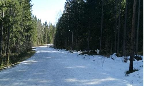 Paysage typique en hiver.