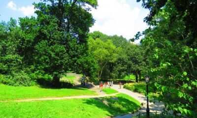 Central Park de New-York. Photo de Megan Jorgensen.