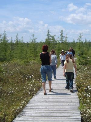 Réseve écologique Tourbairie Lanoraie