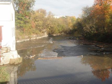 Rivière Chêne
